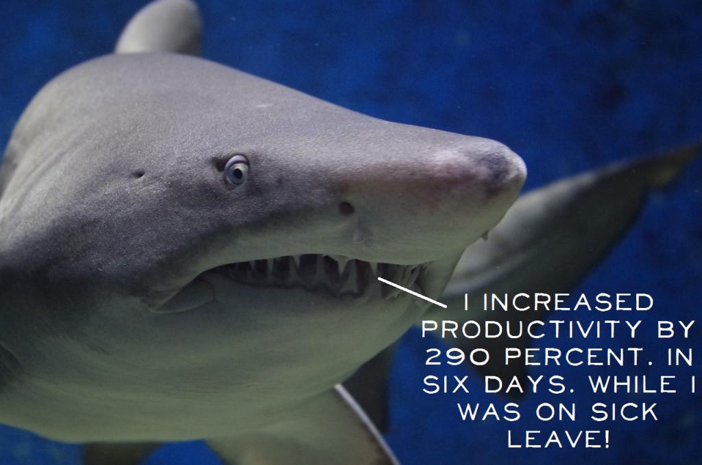 Shark liar